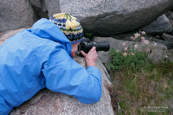 Julie photographing columbines