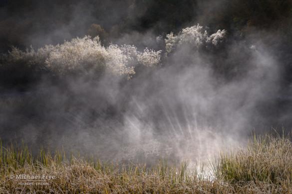Sunbeams reflected upward into mist, Rush Creek, June Lake Loop, Inyo NF, CA, USA