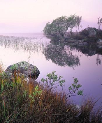 """""""That Damned Loch"""" by Tim Parkin"""