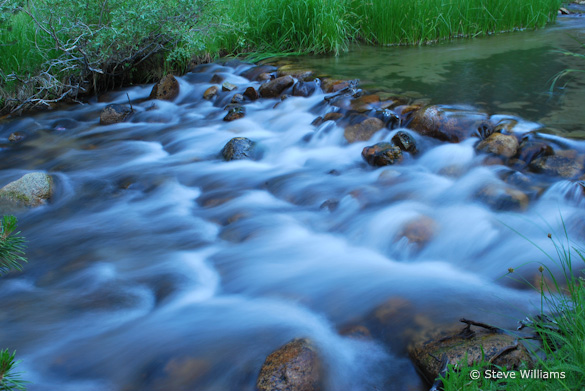"""Rock Creek—Beautiful Stream"" by Steve Williams"