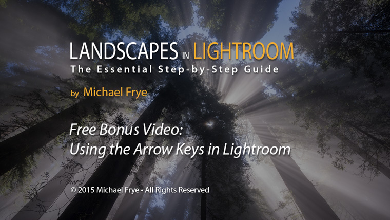 Free Bonus Video: Using the Arrow Keys in Lightroom