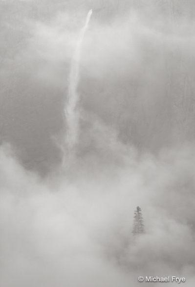 30. Upper Yosemite Fall, mist, and ponderosa pine, Yosemite