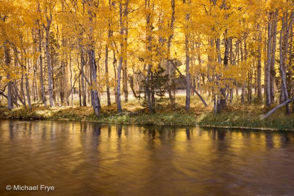 31. Autumn reflections, Rush Creek, June Lake Loop