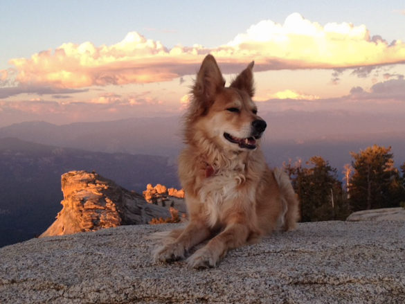 Rider posing at sunset (photo by Claudia Welsh)