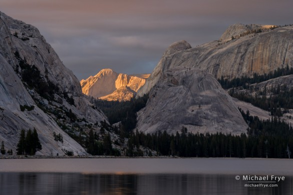 Mt. Conness from Tenaya Lake at sunset, Yosemite NP, CA, USA