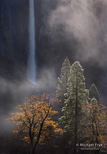 Trees, mist, and Bridalveil Fall