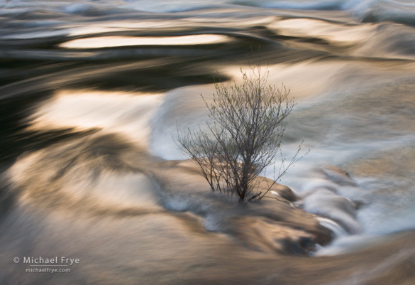 Spring runoff, Merced River near El Portal, CA, USA