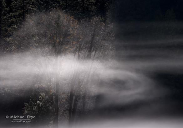 Swirling mist, El Capitan Meadow, Yosemite NP, CA, USA