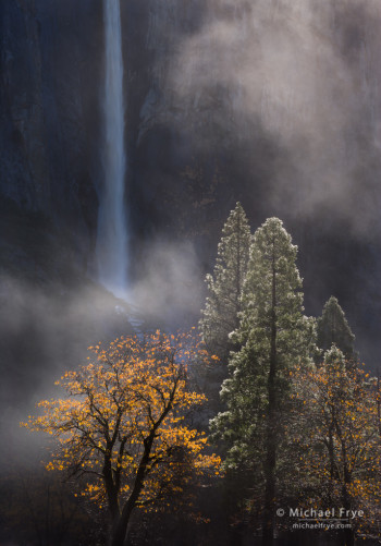Trees and Mist Underneath Bridalveil Fall, Yosemite National Park, California