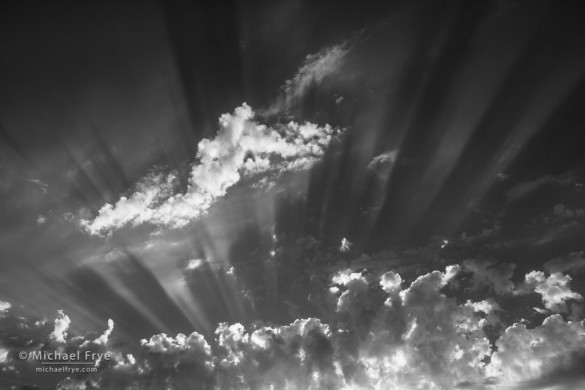 Sunbeams, Mariposa County, CA, USA