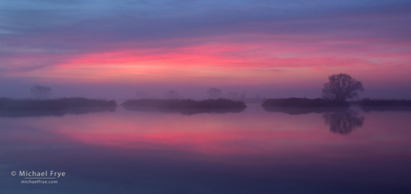 Foggy sunrise, San Joaquin Valley, CA, USA