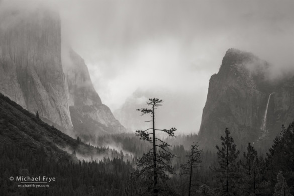 El Capitan and Bridalveil Fall from Tunnel View, Yosemite NP, CA, USA