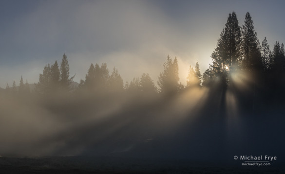 Sun breaking through fog, Tuolumne Meadows, Yosemite NP, CA, USA