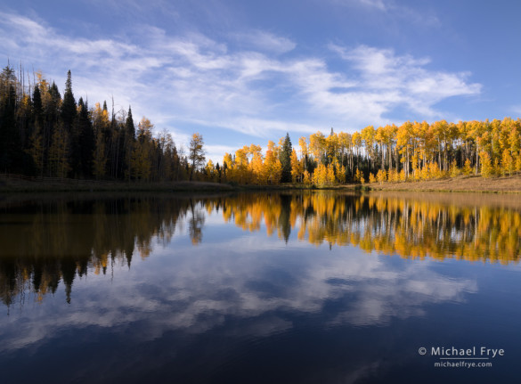 Aspen-lined lake, Uncompahgre NF, CO, USA