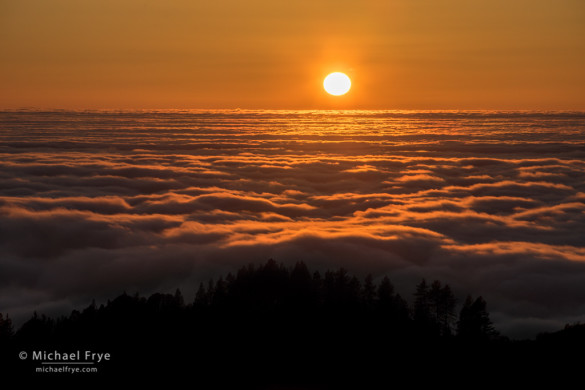 Fog and the setting sun over the San Joaquin Valley from the Sierra Nevada foothills, Mariposa County, CA, USA
