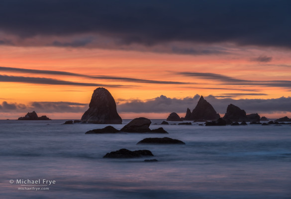 Sea stacks at sunset , Redwood NP, CA, USA