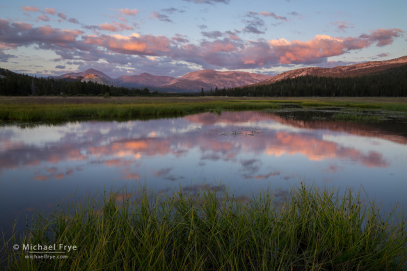 Sunset clouds reflected in a pond, Tuolumne Meadows, Yosemite NP, CA, USA