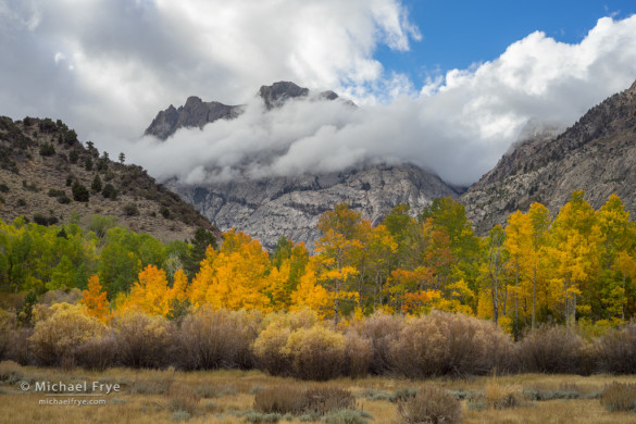 Carson Peak and aspens during a clearing storm, June Lake Loop, Inyo NF, CA, USA