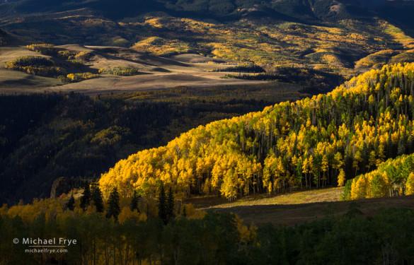 Aspen-covered hillsides, Uncompahgre NF, CO, USA