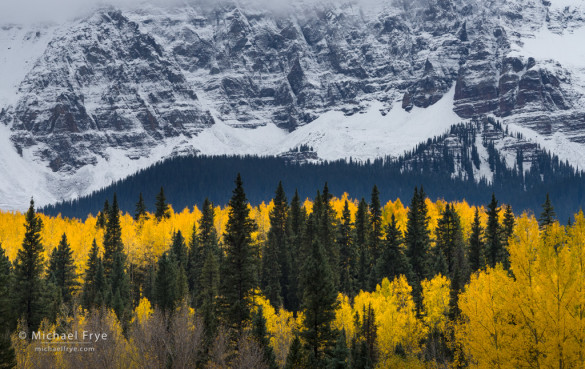 Aspens and a snow-covered mountainside, Uncompahgre NF, CO, USA