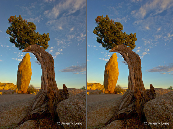 Left: the original image; Right: modified with Photoshop's Selective Color tool