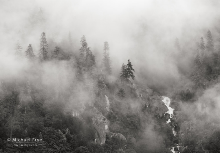 Pines, fog, and Cascade Creek, Yosemite NP, CA, USA