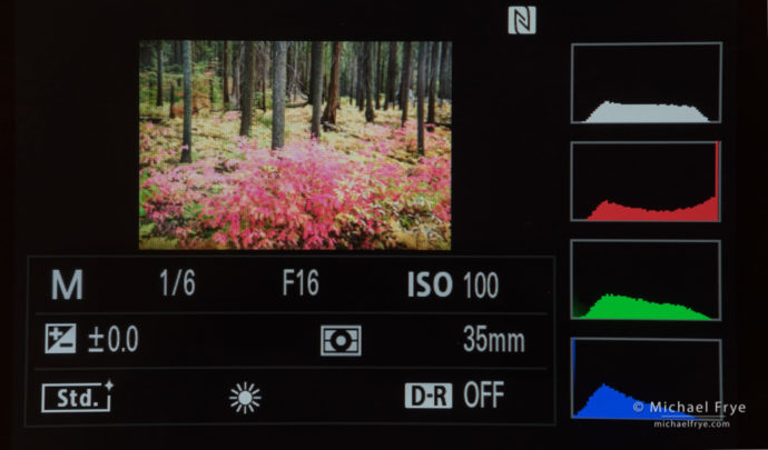 The RGB histogram on my Sony A7rII, showing clipping in the red channel