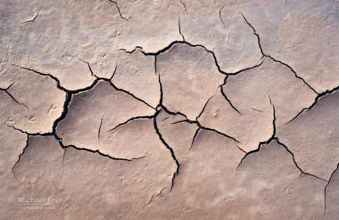 Mud cracks and bird tracks, Death Valley NP, CA, USA