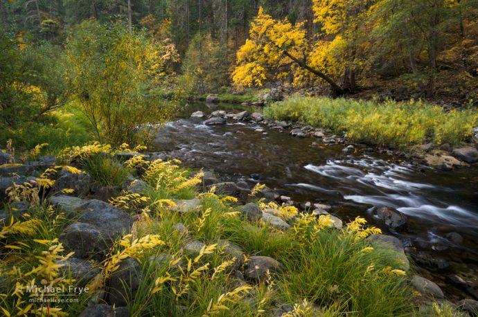 Autumn along the Merced River, Yosemite NP, CA, USA