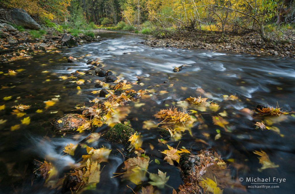 Yosemite Fall Color
