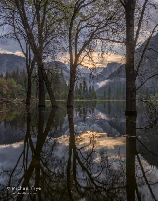14. Half Dome and oaks in flooded Leidig Meadow, Yosemite NP, CA, USA