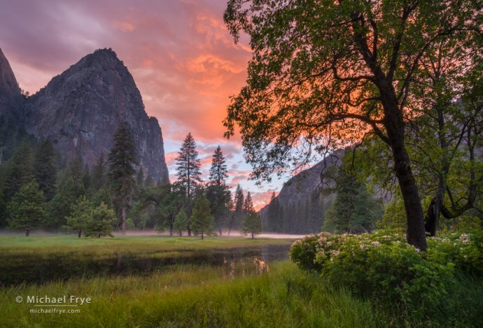 22. Sunset in El Capitan Meadow with oaks, pines, azaleas, and Lower Cathedral Rock, Yosemite NP, CA, USA