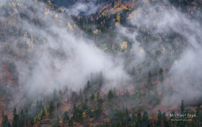 Mist and autumn colors in the Uncompahgre Gorge, CO, USA
