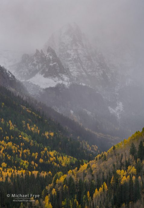 Aspens and peak above Telluride, CO, USA