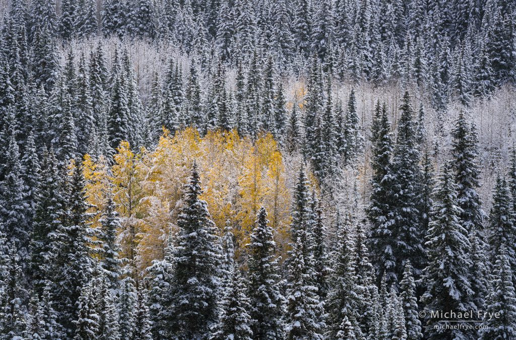 Autumn into Winter: Part Two