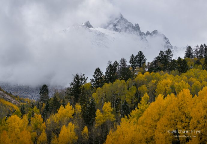 Aspens and Mt. Sneffels, Uncompahgre NF, CO, USA
