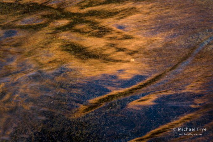Cottonwood leaf and reflections, Utah, USA