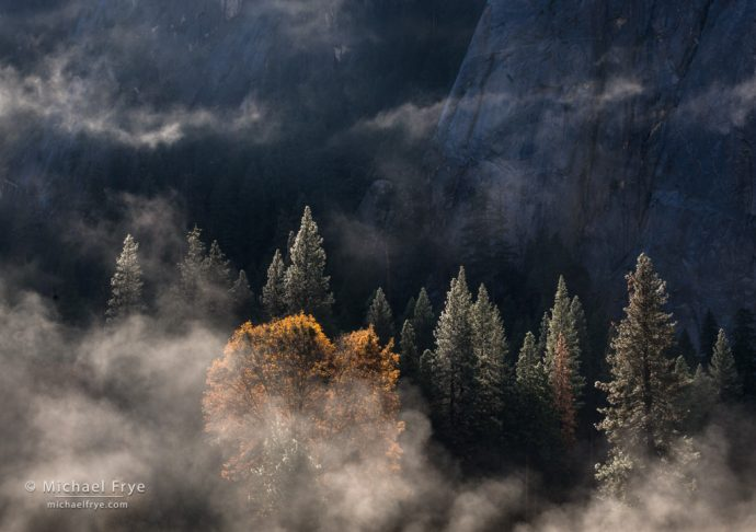 Mist, trees, and Middle Cathedral Rock, Yosemite NP, CA, USA