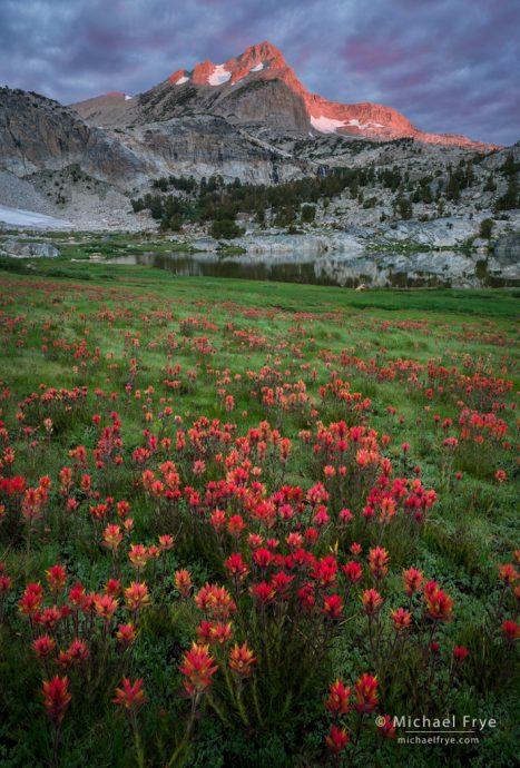19. Paintbrush and peak, sunrise, Inyo NF, California