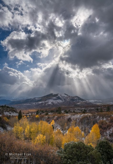 29. Sunbeams and aspens, Colorado