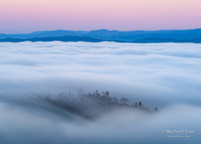 Fog in the Sierra foothills, Mariposa County, CA, USA