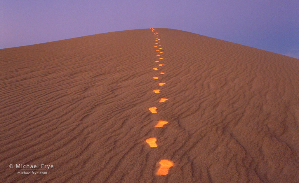 From the Archives: Footprints on Sand Dune
