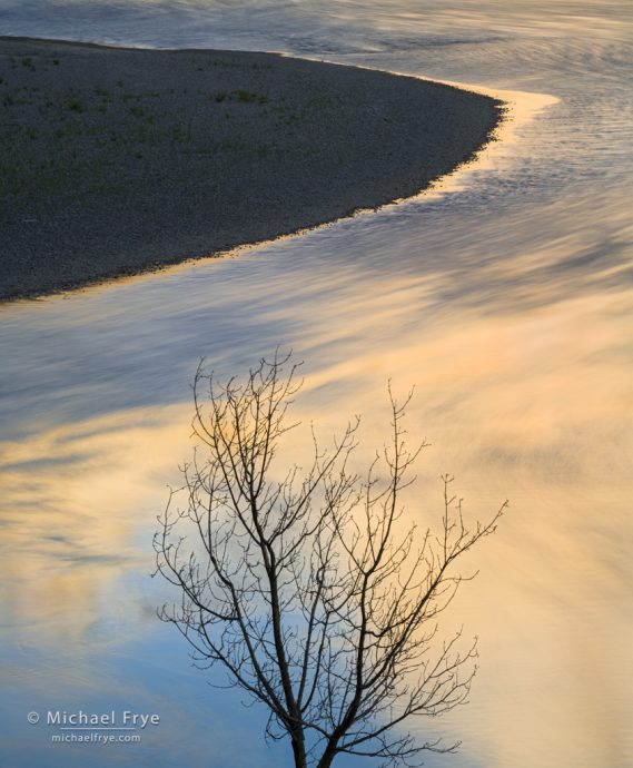 Cottonwood and sandbar along the Green River, Dinosaur National Monument, Colorado, USA