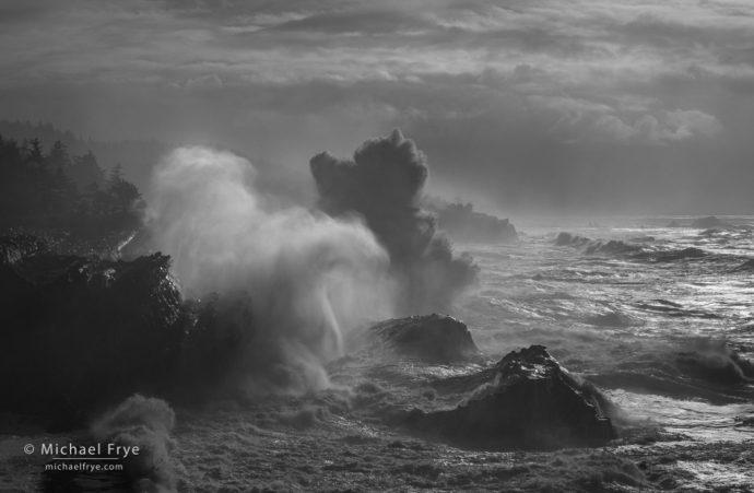 LIght and dark, Oregon Coast, USA