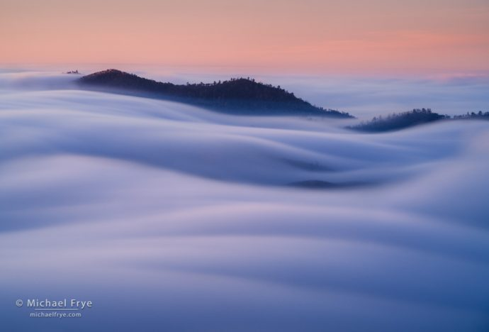Waves of fog, sunrise, Sierra Nevada foothills, CA, USA