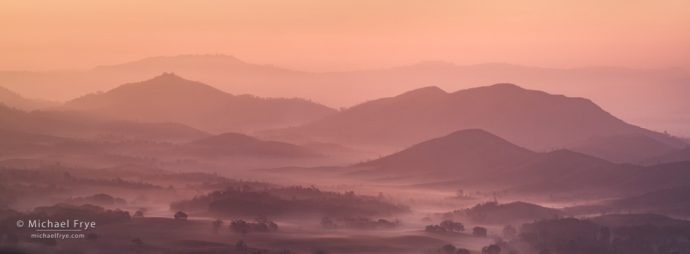 Misty morning in the Sierra Nevada foothills, CA, USA