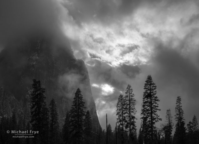 Sunbeams, trees, and Lower Cathedral Rock, Yosemite NP, CA, USA