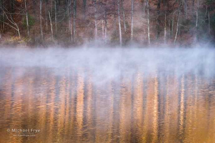 Fog and reflections, autumn, South Carolina, USA