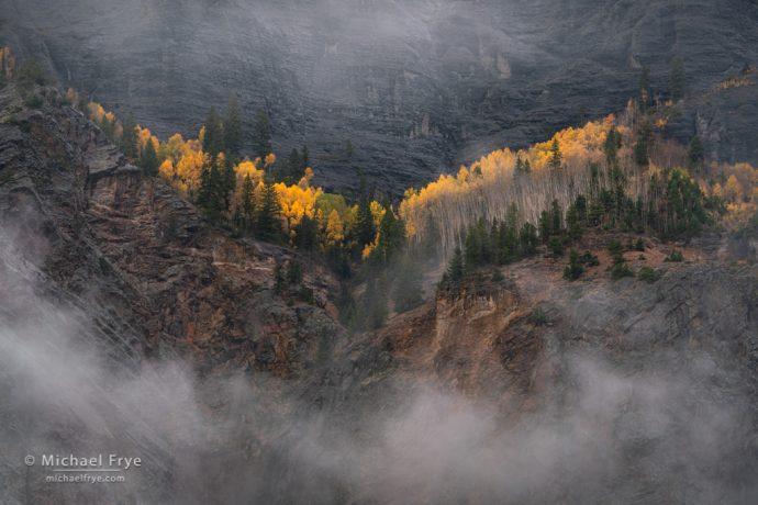 Cliffs and aspens, Uncompahgre NF, CO, USA
