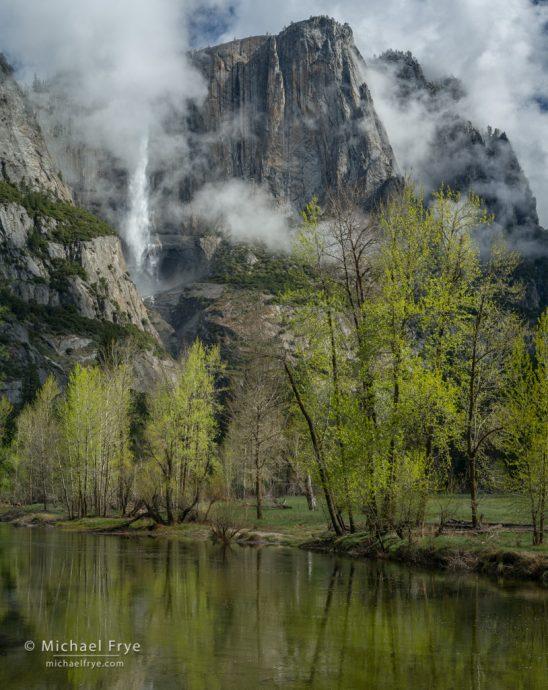 Mist, cottonwood trees, Yosemite Falls, and the Merced River, Yosemite NP, CA, USA